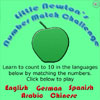 Little Newton's Number Match Challenge